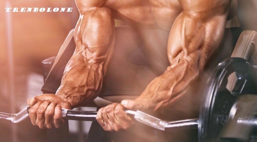 massive-muscles-trenbolone