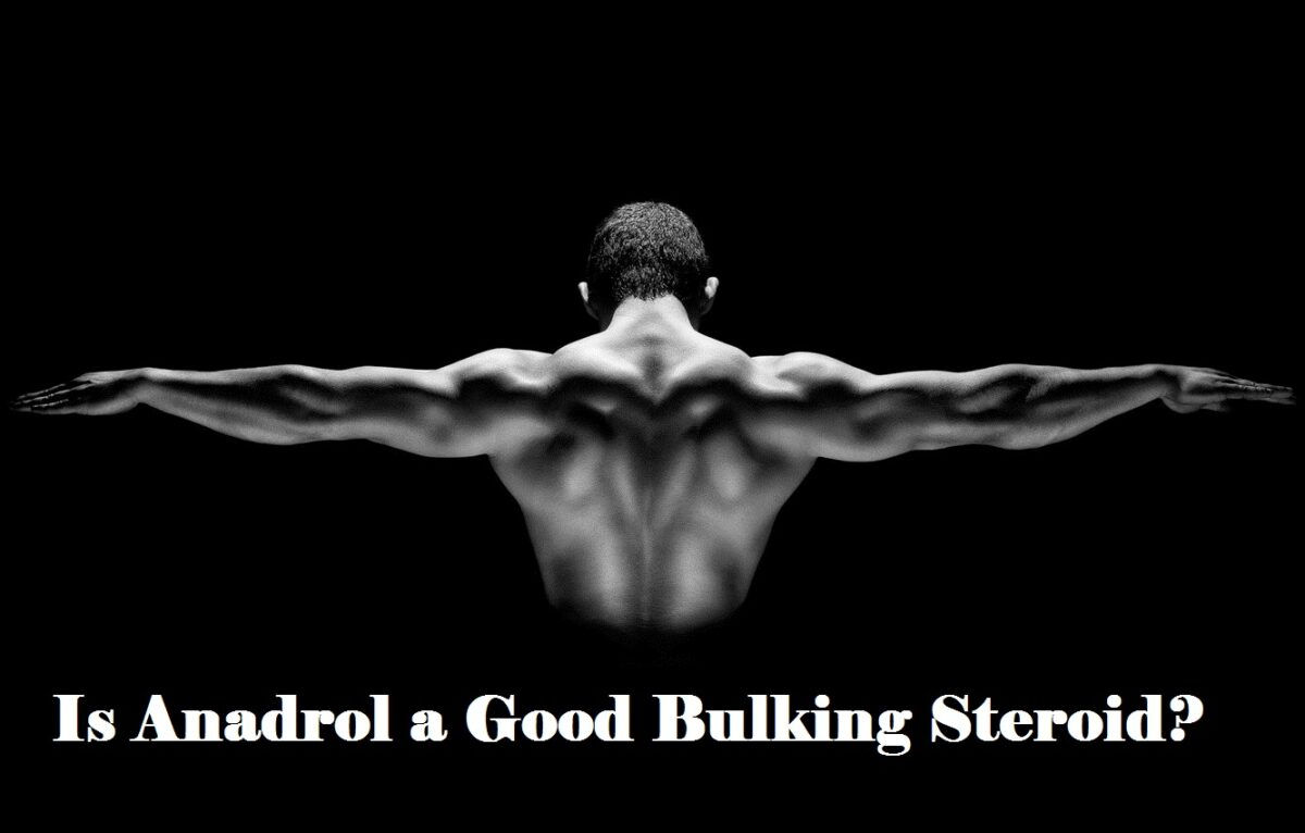Is Anadrol a Good Bulking Steroid