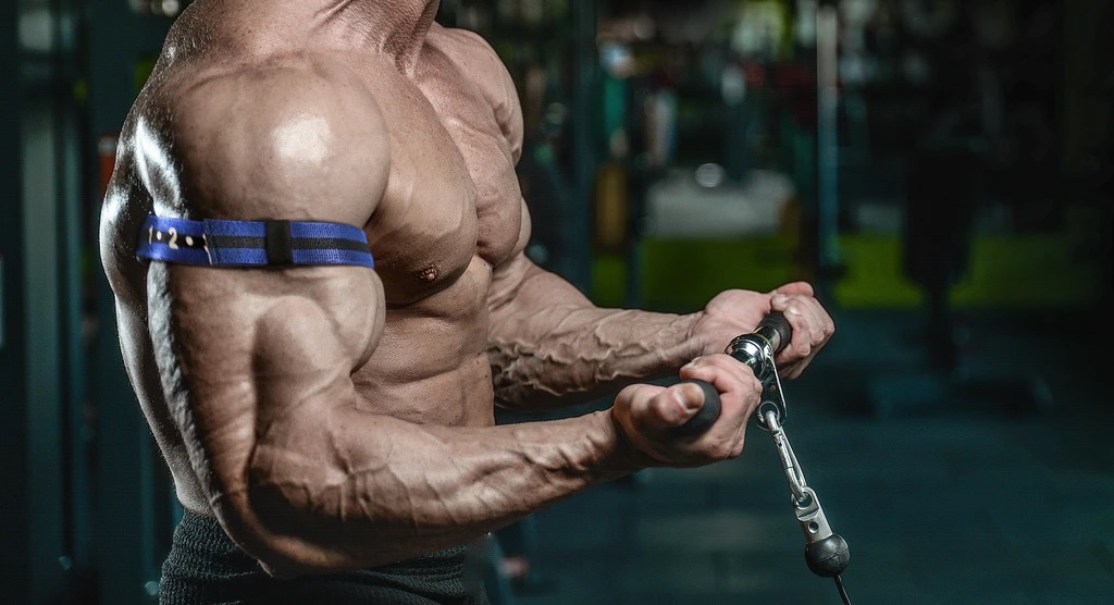extreme-muscles-dianabol-use