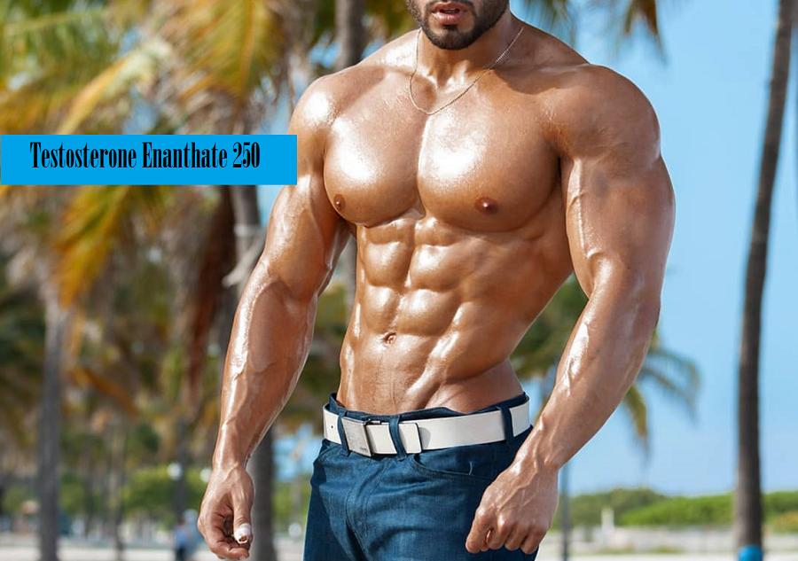 testosterone-enanthate-250