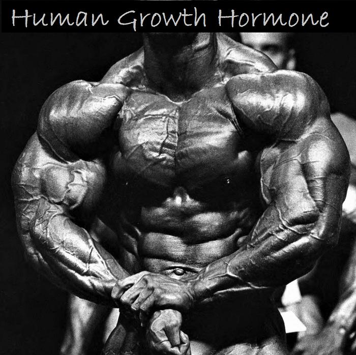 Human-Growth-Hormone