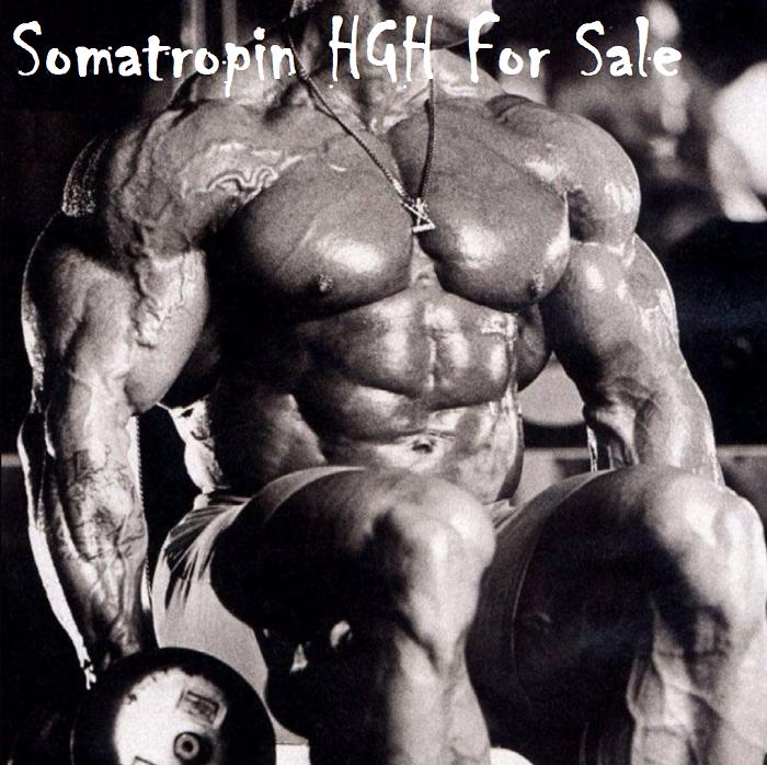 Somatropin-HGH-For-Sale