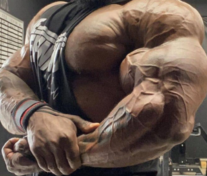 Nandrolone-Phenylpropionate-NPP-muscles